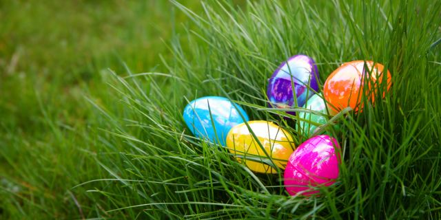 Family Fun Event - Easter EGGstravaganza at the Charleston Museum