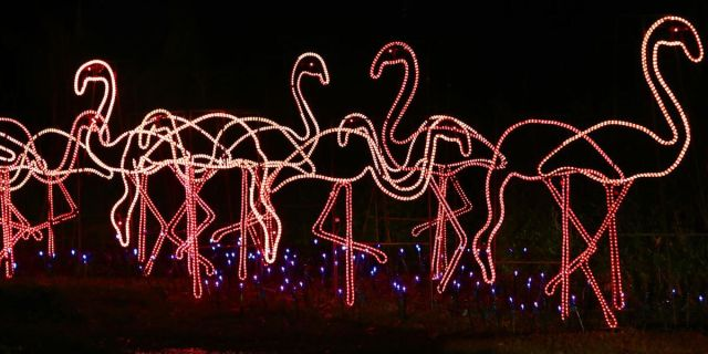30TH ANNUAL HOLIDAY FESTIVAL OF LIGHTS AT JAMES ISLAND COUNTY PARK